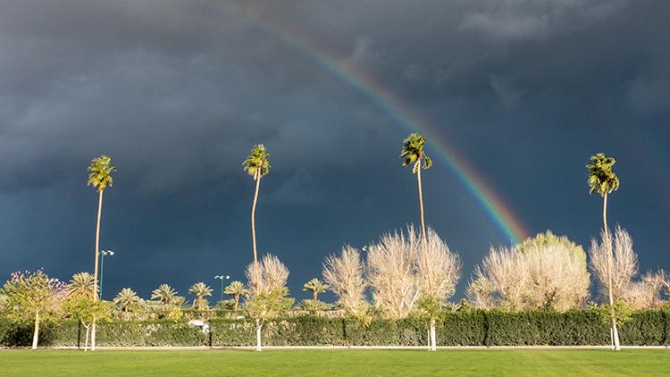 desert, palm, springs, indio, polo field, sunset, rainbow, ca, california, mojave