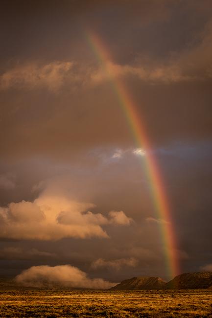 Fall colors, fall, trees, aspens, san juan mountains, co, colorado, durango, rockies, mountains, storm, rain, clouds, rainbows, rainbow, new mexico,, photo