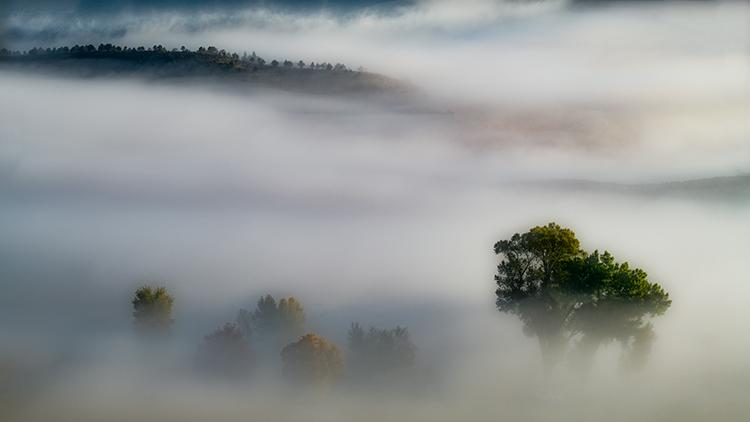colorado, co, san juan mountains, mountains. trees, aspens, fall, fog, atmospherics, owl creek, ridgway, snow, flora, autumn, rockies, photo