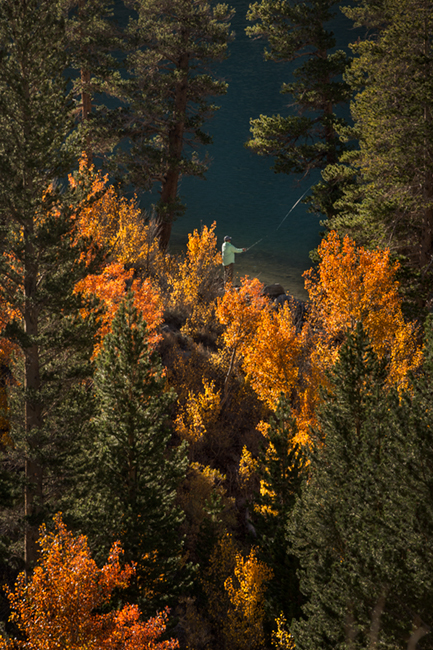 Sierra, fall. color, fall colors, mountains, trees, landscape, rock creek, aspens, california, north lake, reflections, fly fishing, fishing, photo