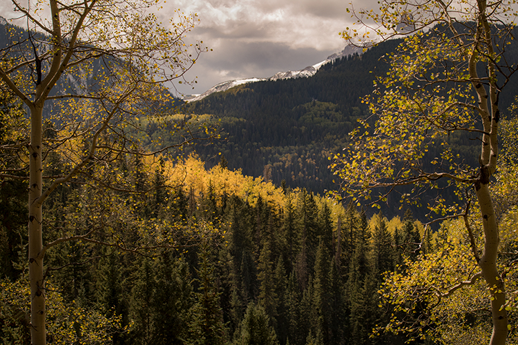 Rocky Mountains, San Juan mountains, rockies, san juans, fall, autumn, color, trees, aspen, pine, fir, colorado, co, ridgway, clouds, lyme kiln, lime, photo