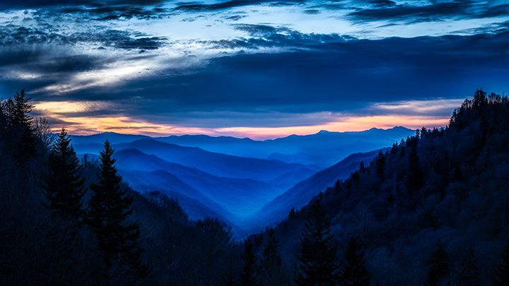 Great Smoky Mountains, smokies, smokys, Tennessee, tn, north carolina, nc, spring, mountains, fog, trees, sunrise, mornings, predawn, photo