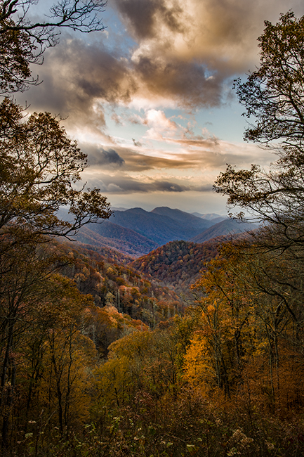 great smoky national park, smokys, mountains, fall, water, nc, tn, north carolina, tennessee, maples, colors, national, park, flora, trees, , photo
