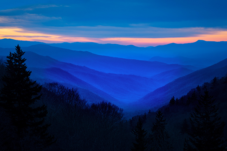 Great Smoky Mountains, smokies, smokys, Tennessee, tn, north carolina, nc, spring, mountains, fog, trees, sunrise, mornings, photo