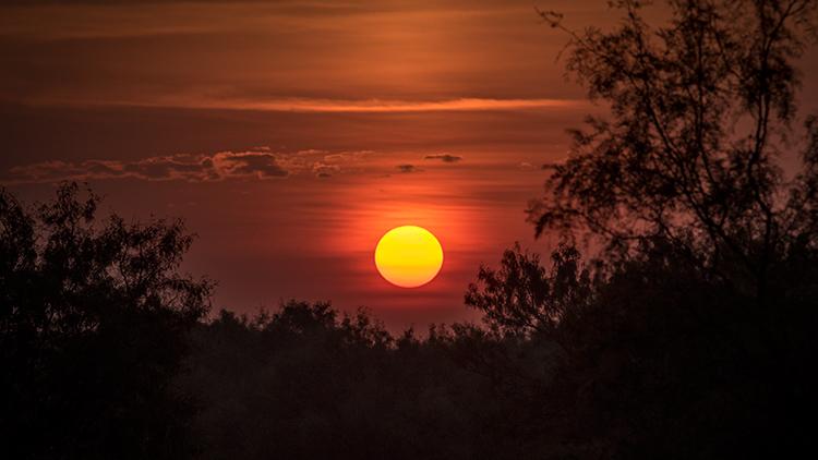 texas, tx, wichita falls, sunrise, fog, photo