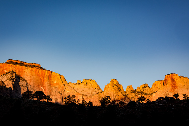 Zion, Zion National Park, ut, utah, red rock, trees, fall, colorado plateau, southwest, mountains, sandstone, zion canyon, weeping rock, cottonwood, trees, towers, temples, sunrise, photo