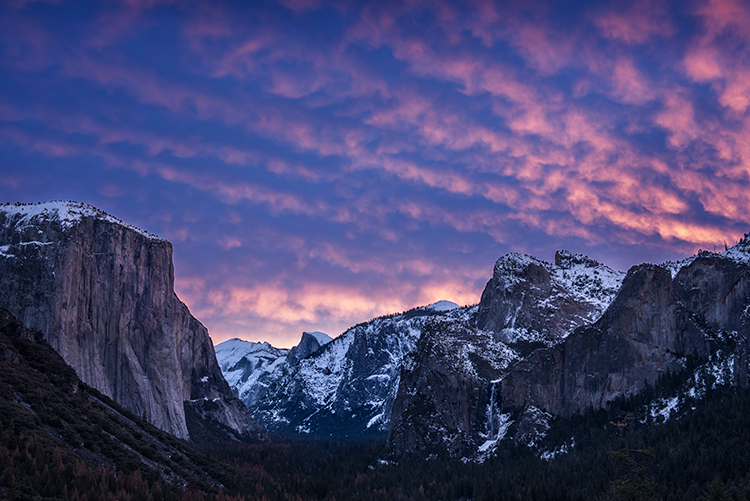 <p>yosemite national park, yosemite, sierra, mountains, trees, black oaks, winter, fall, forest, el capitan, half dome, tunnel view, stars, california</p>, photo