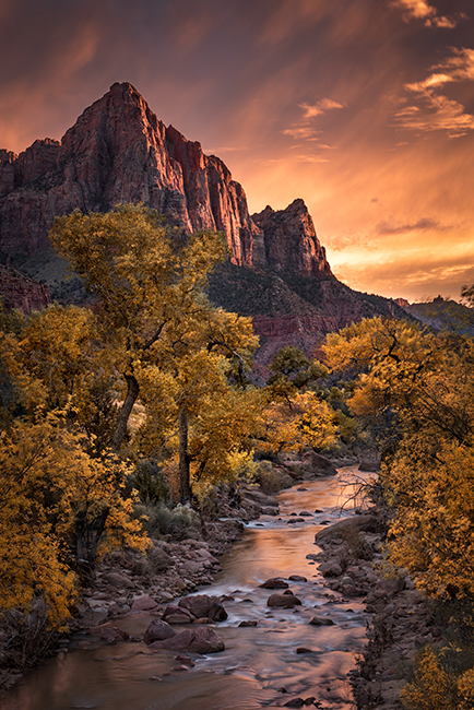zion, zion national park, mountains, southwest, utah, maples, fall colors, fall, watchman, river, virgin, sunset, alpine glow,, photo