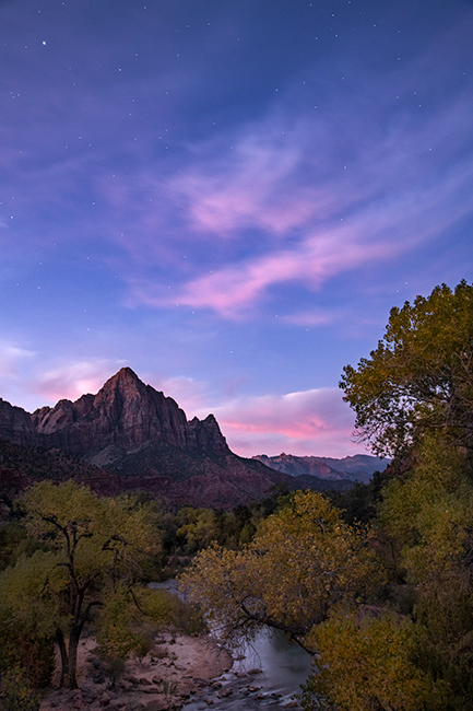 Zion, Zion National Park, ut, utah, red rock, trees, fall, colorado plateau, southwest, mountains, sandstone, zion canyon, weeping rock, cottonwood, trees, flora, maples, fall colors, watchman, stars, photo