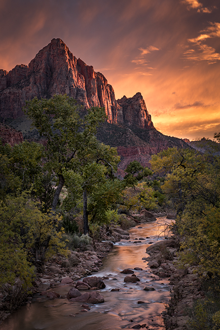 zion, zion national park, mountains, southwest, utah, maples, fall colors, fall, watchman, river, virgin, sunset, alpine glow, , photo