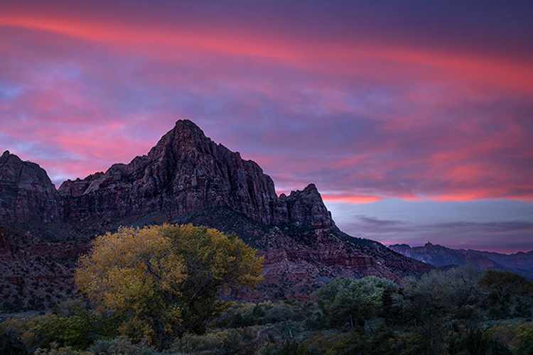 watchman, utah, ut, zion, virgin river, sunset, sunrise, stars, red rock, colorado plateau, southwest, fall, cottonwoods, colors, photo