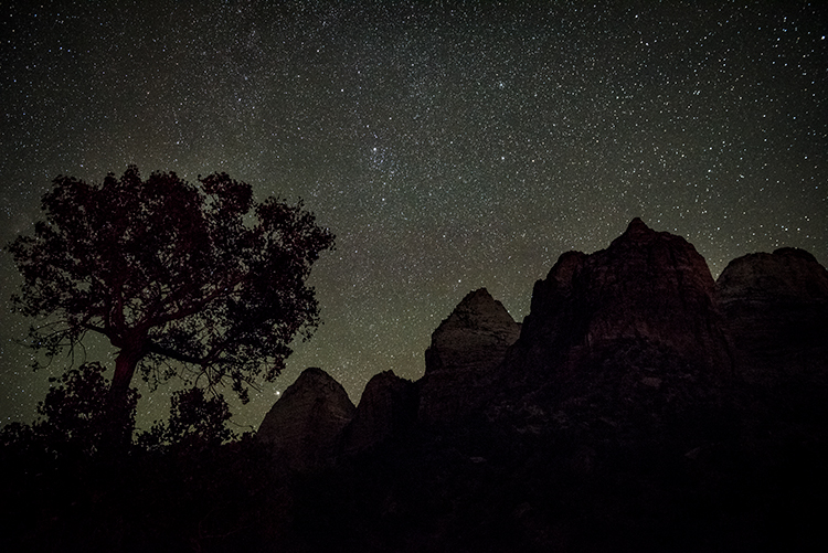 Zion, Zion National Park, ut, utah, red rock, trees, fall, colorado plateau, southwest, mountains, night, predawn, stars, , photo